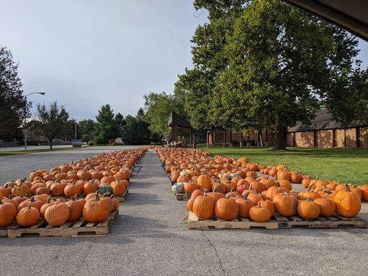 Pumpkin Gallery